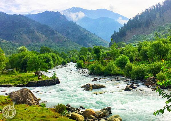 Wisata Pahalgam Kashmir